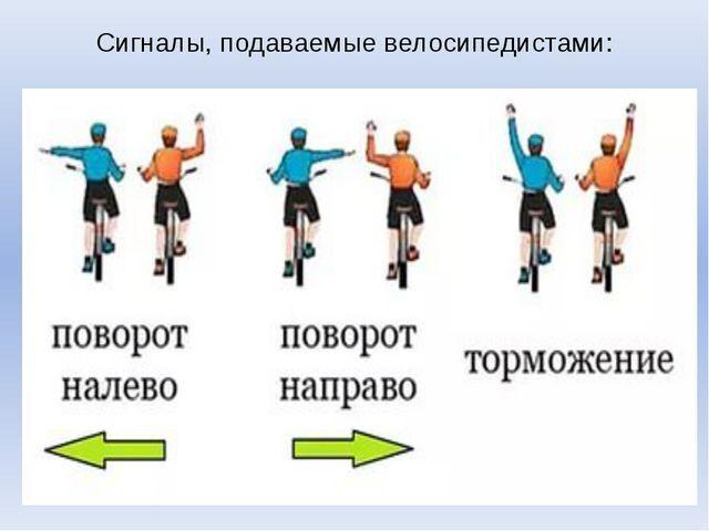 Про велосипед и велосипедистов [часть 1/5]