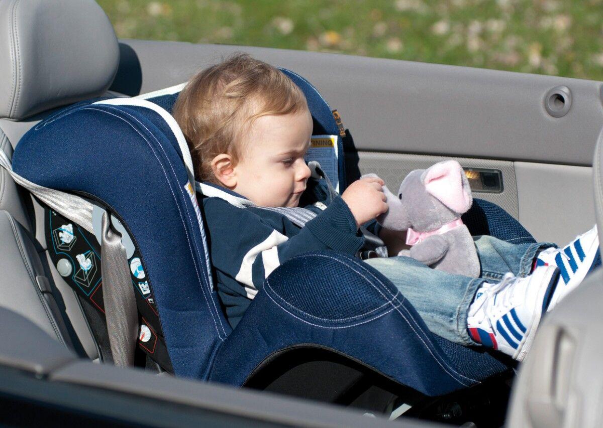 удерживающее устройство для детей в автомобиле (главный ключ)